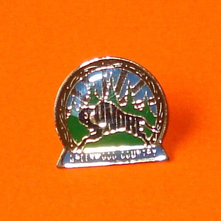 Sundre Sunburst Pin