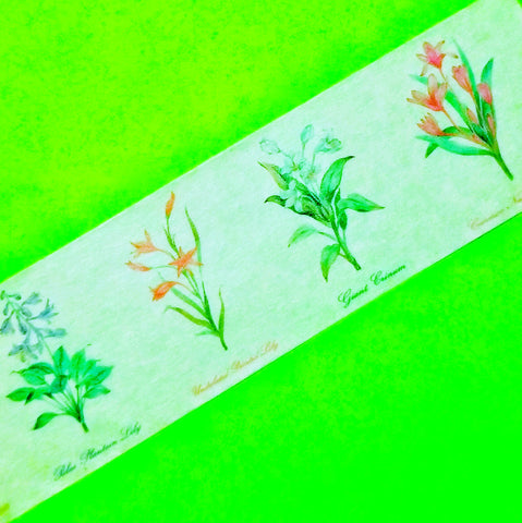 Botanical Wide Washi Tape