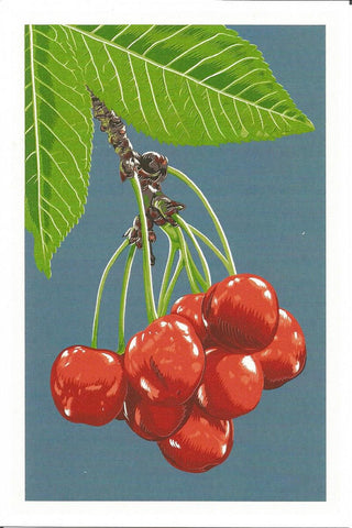 Cherry Branch Postcard
