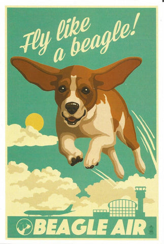 Beagle Air Postcard