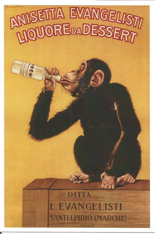 Drunken Monkey Postcard