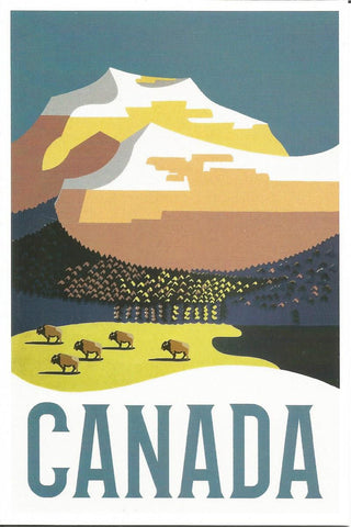 Canada - Mountain & Buffalo Postcard
