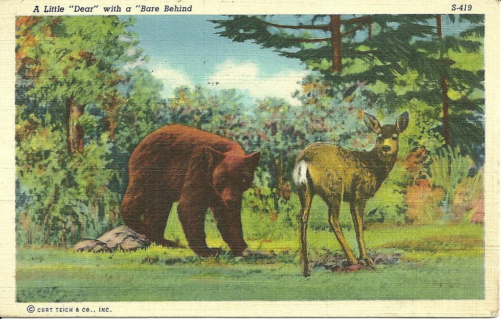 Deer with a Bear Behind Postcard
