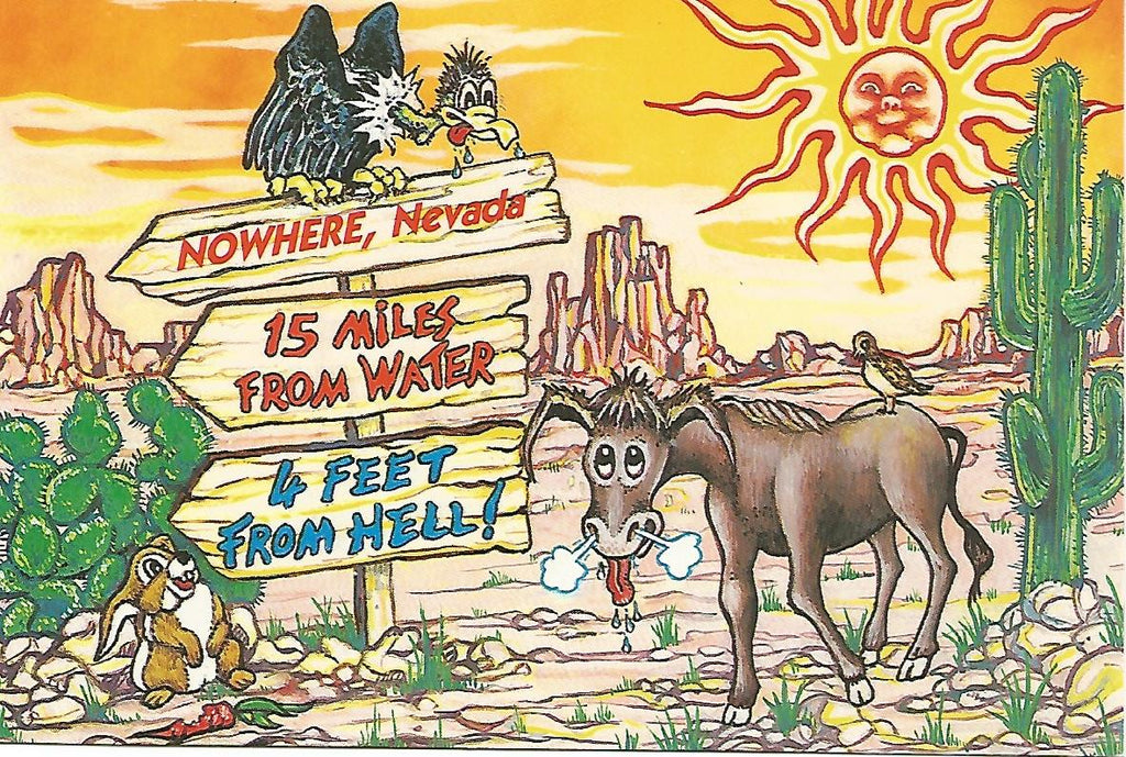 USA - Nevada - Nowhere Postcard