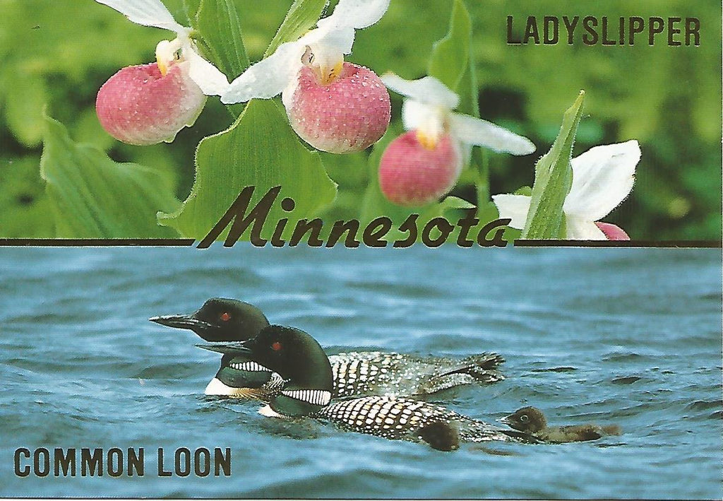 USA - Minnesota - Views Postcard Set