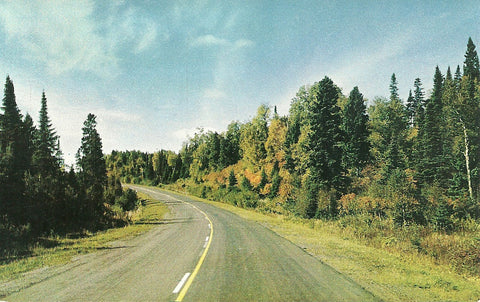 Autumn Highway Postcard