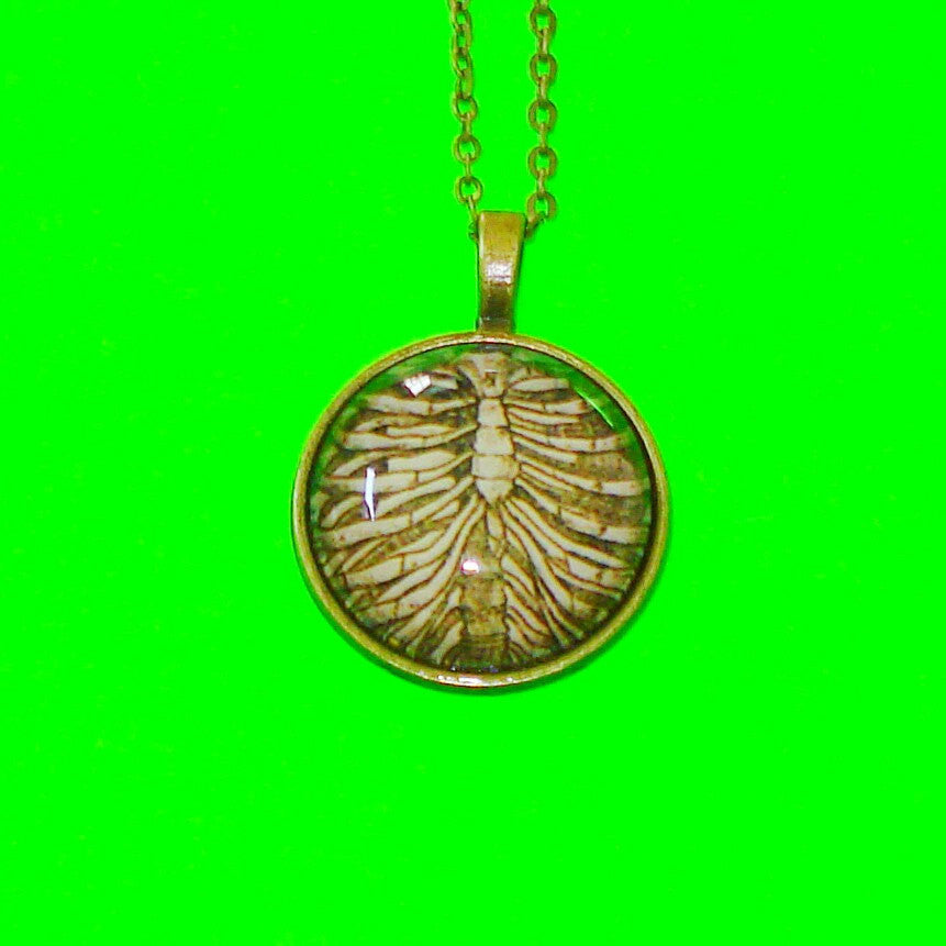 Skeleton Ribcage Pendant Necklace