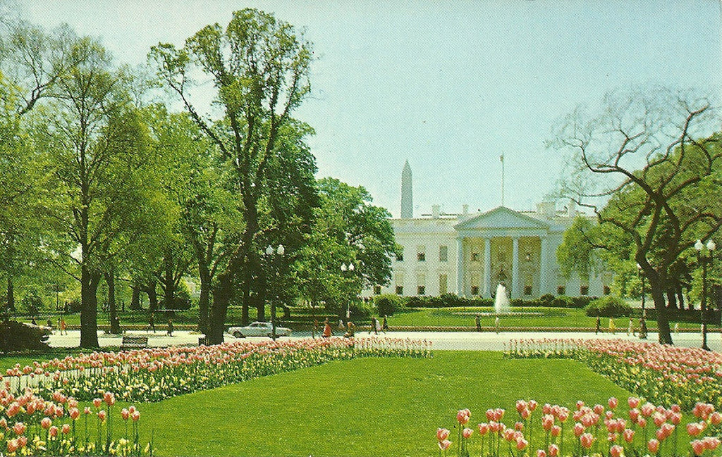 USA - Washington, DC - White House Postcard