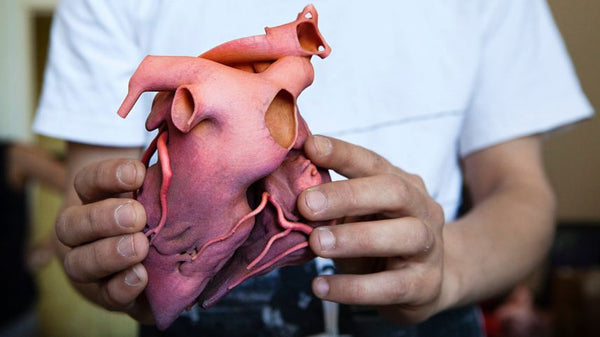 3D-Printed Organs: Are you still human?