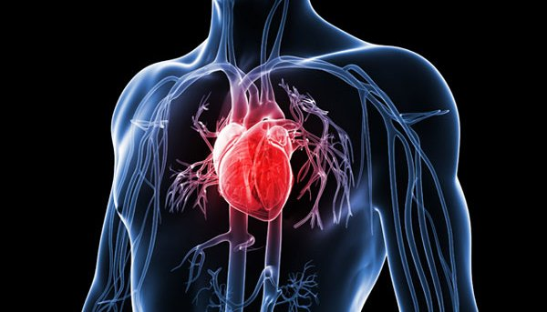 Inflammation linked to Heart Disease