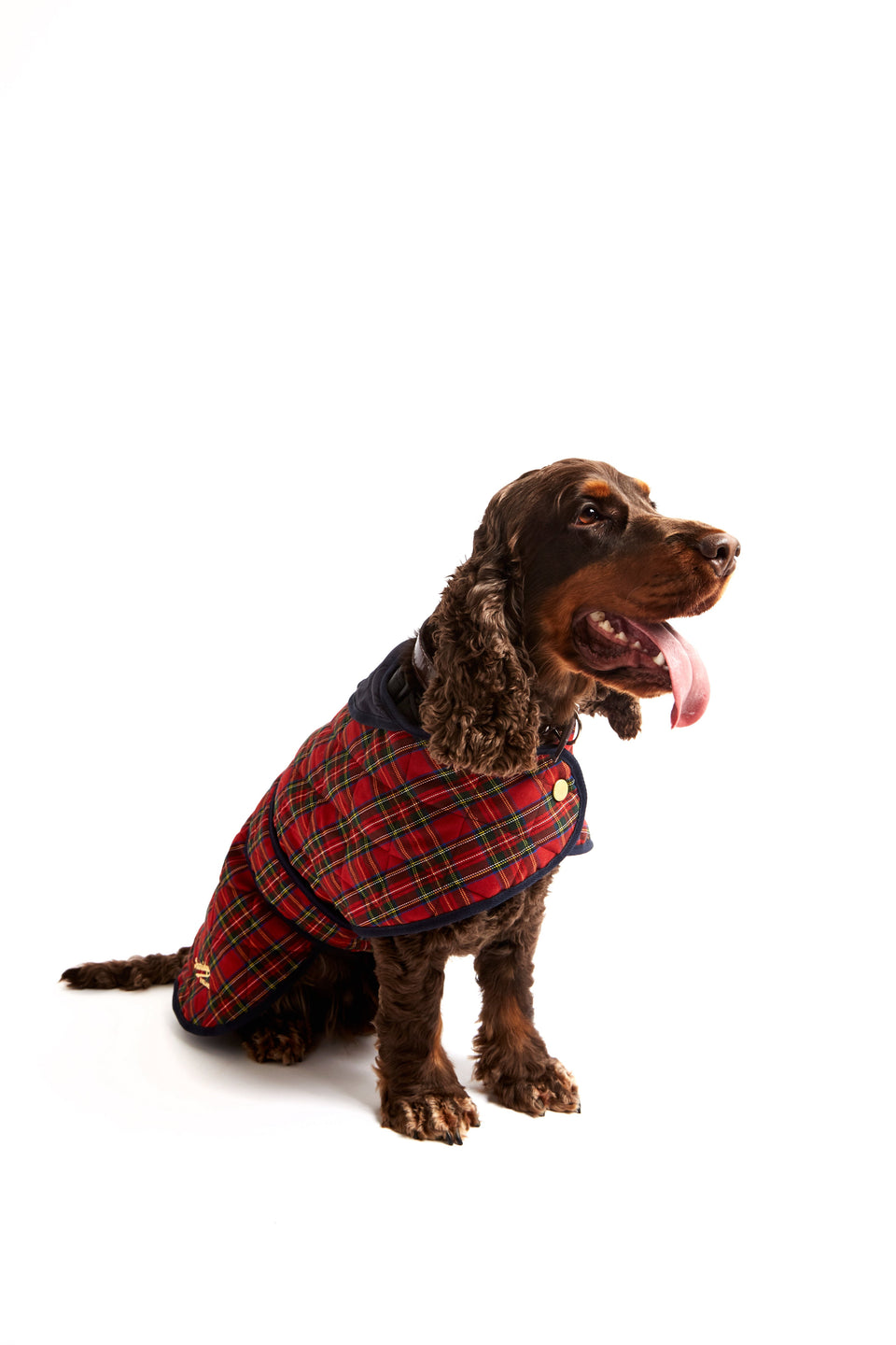 Dog Coat - Red & Green Tartan