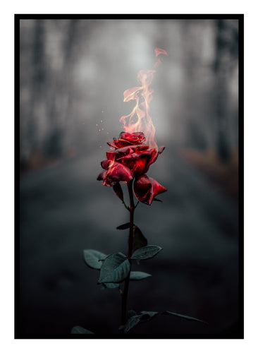 Burning Rose Poster - Hidden Prints