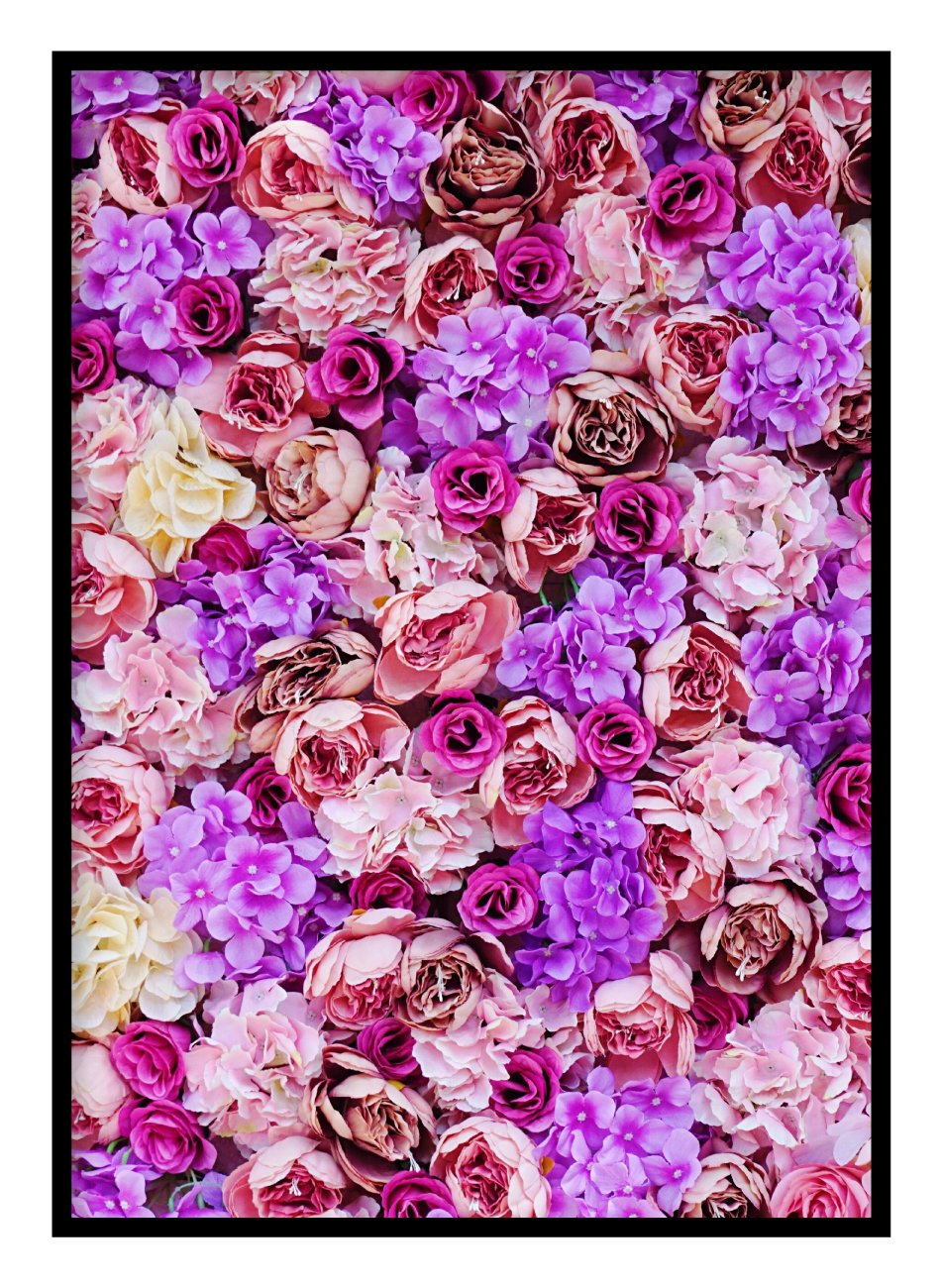 Colourful Flowers Poster