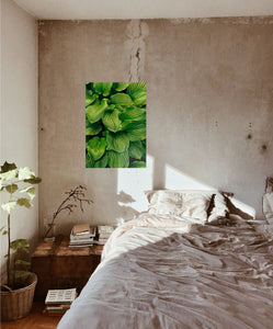 Green Leaves Poster - Hidden Prints