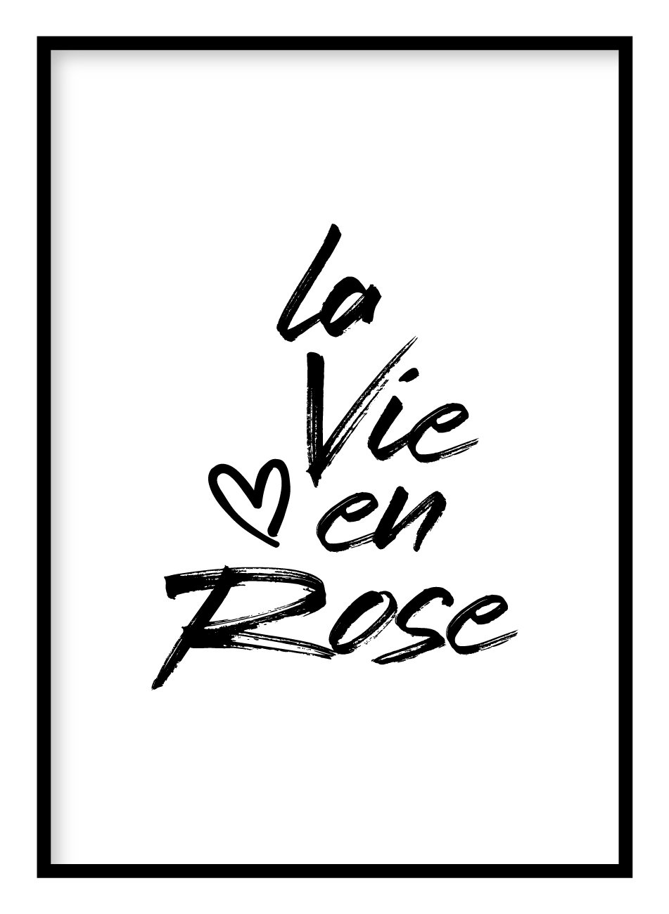 La Vie En Rose Poster - Hidden Prints