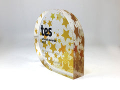 Gold coloured acrylic TES Award
