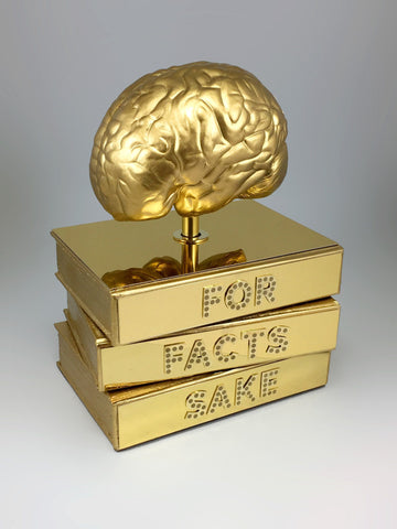 For Fact's Sake Brain Award Bespoke Mixed Media Awards Creative Awards