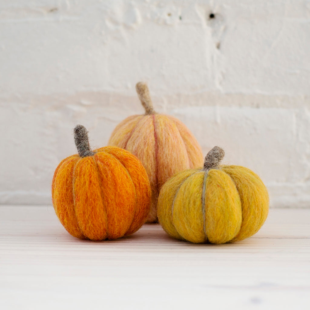 Pumpkins Needle Felting Kit