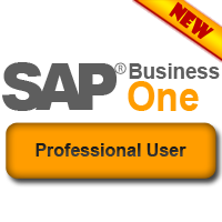 SAP Business One Professional User