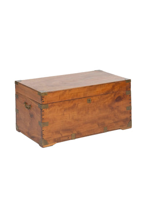 19th Century English Camphor Wood Chest