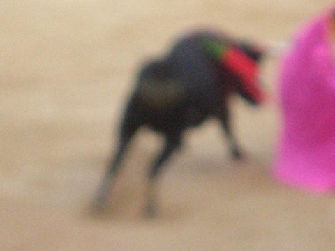 Bullfight Photograph No. 1 by Michael Stuetz