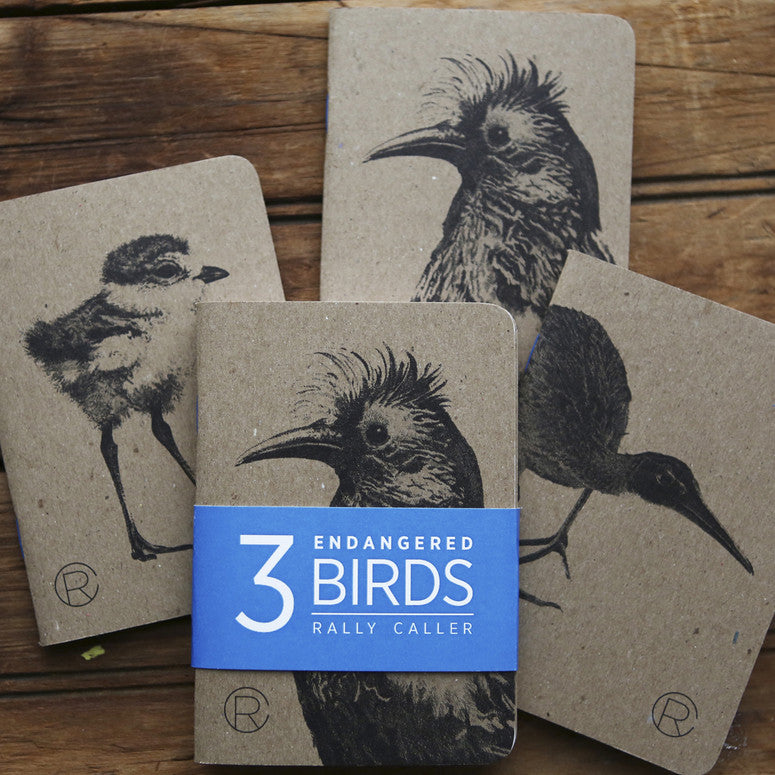 Endangered Birds Notebook