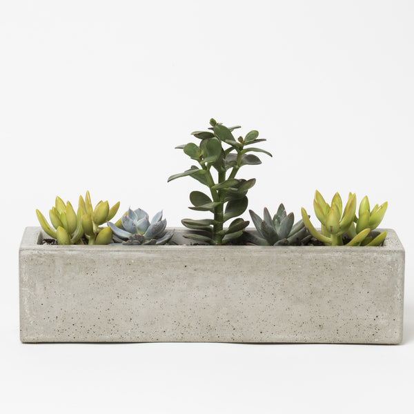 Concrete Windowsill Planter