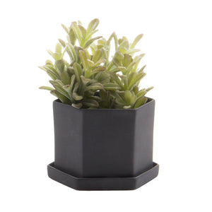 Hex Planter (Black)