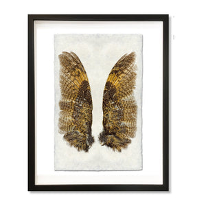 Owl Wings Shadow Box Frame