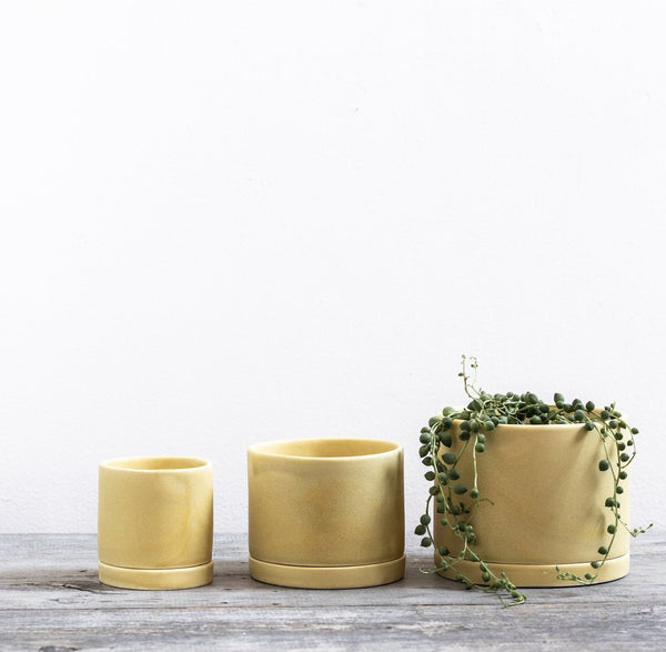 Goldenrod Yellow Round Planter