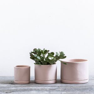 Freckled Pink Round Planter