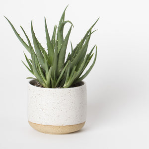 Medium Tabletop Planter - White Speckle - KESTREL