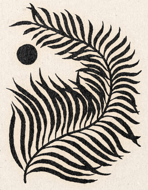 'Curled Palm' Print
