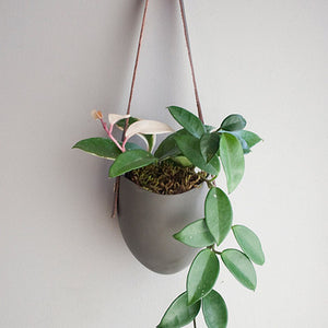 Grey Hanging Planter w/ Leather