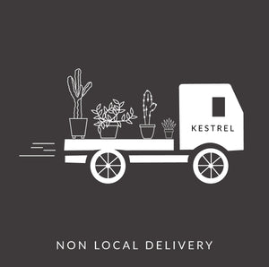 Non Local Delivery - KESTREL