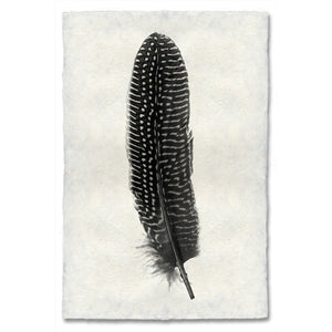Pheasant Feather Print #5