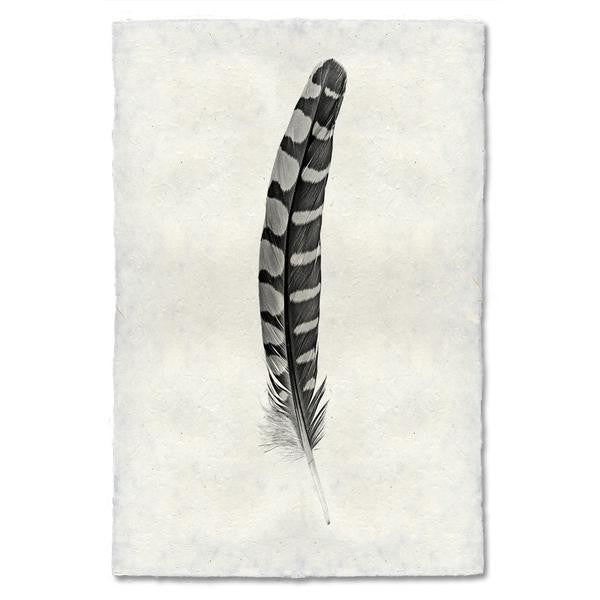 Partridge Feather Print #12