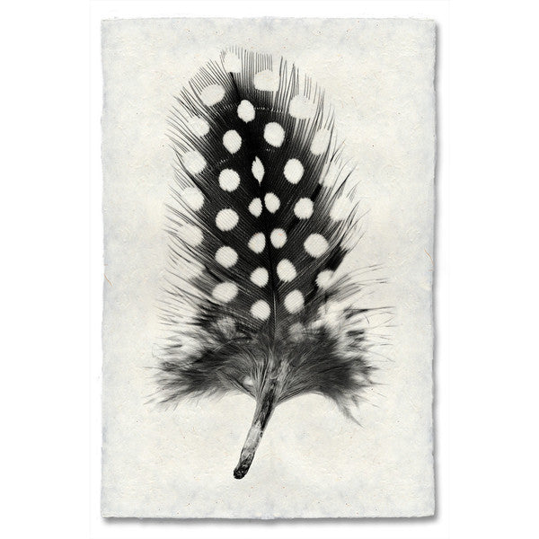 Guinea Fowl Feather Print #1 - KESTREL