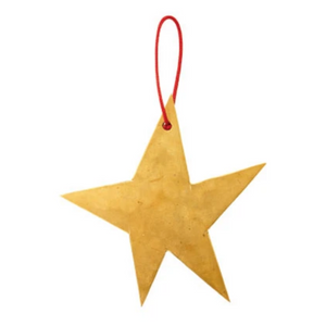 Brass Star Ornament