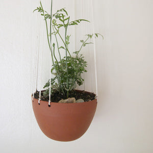 Little Red Hanging Planter