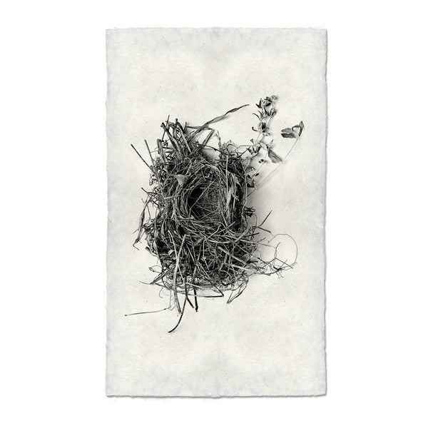 Nest Print #1 on handmade paper