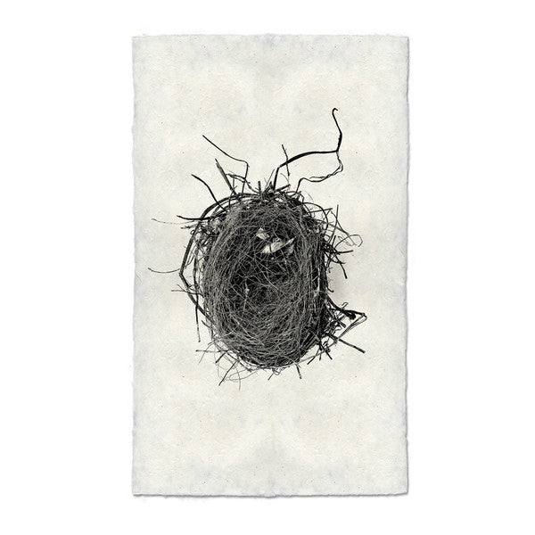 Nest Print #4 on handmade paper