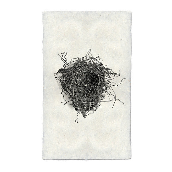 Nest Print #5 on handmade paper
