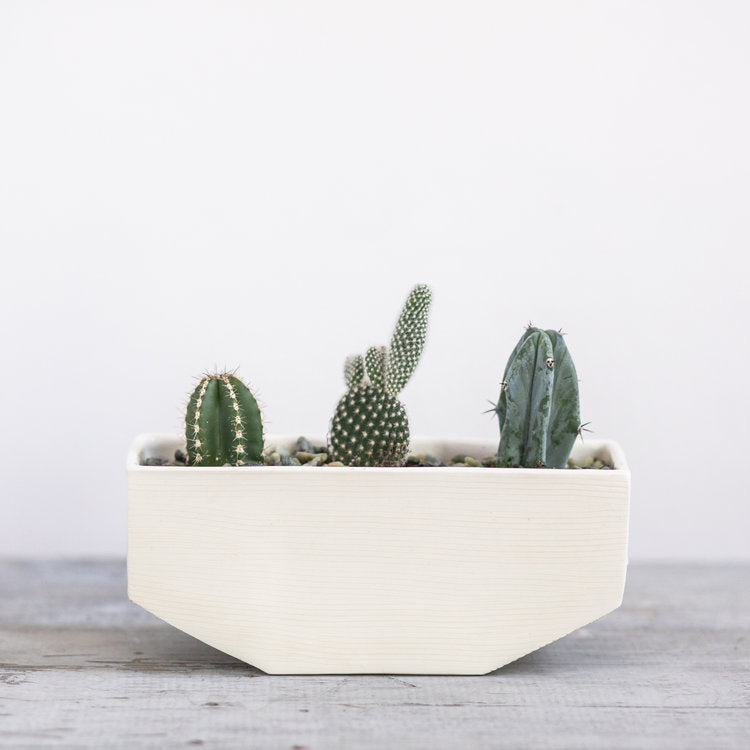Small Linea Planter