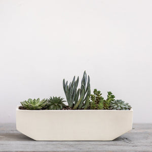 Medium Linea Planter - KESTREL
