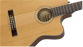 Fender: CN-140SCE with case