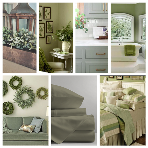 Sage Green Design Inspiration