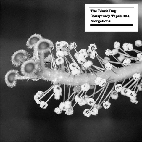 Conspiracy Tapes 004 Morgellons by The Black Dog (Downloads)