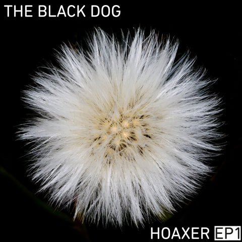 Hoaxer EP1 by The Black Dog (Downloads)