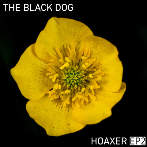 Hoaxer EP2 by The Black Dog (Downloads)